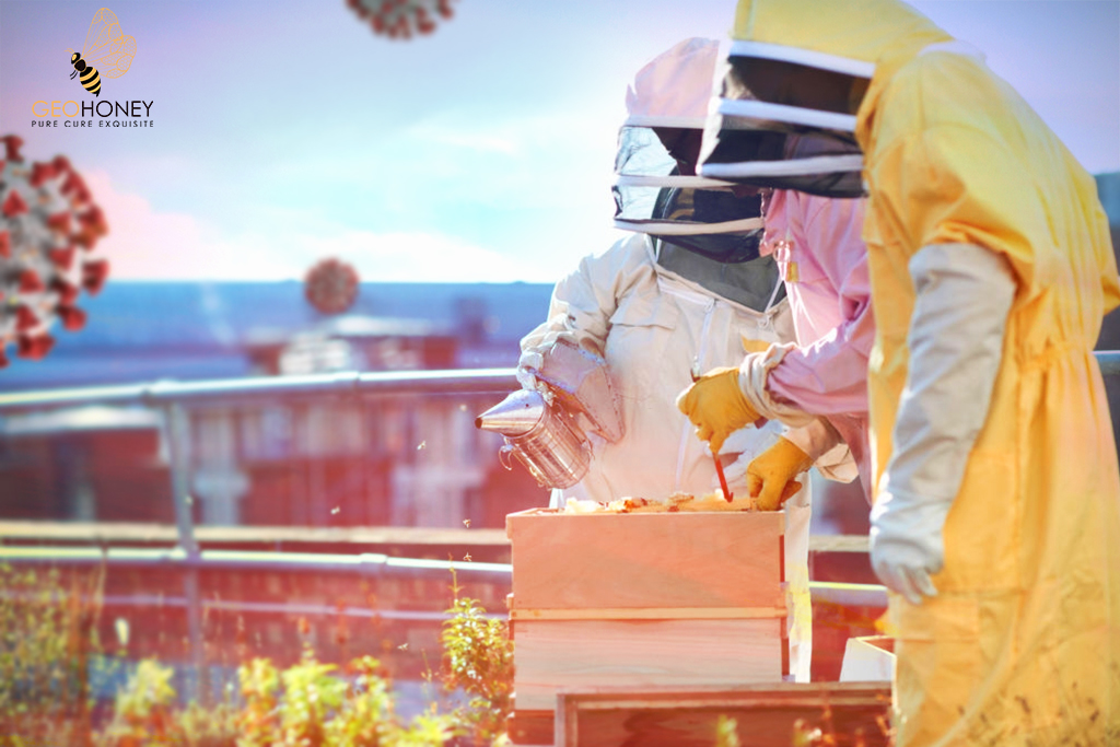 Beekeepers and Pollination are Affected by COVID-19 Pandemic