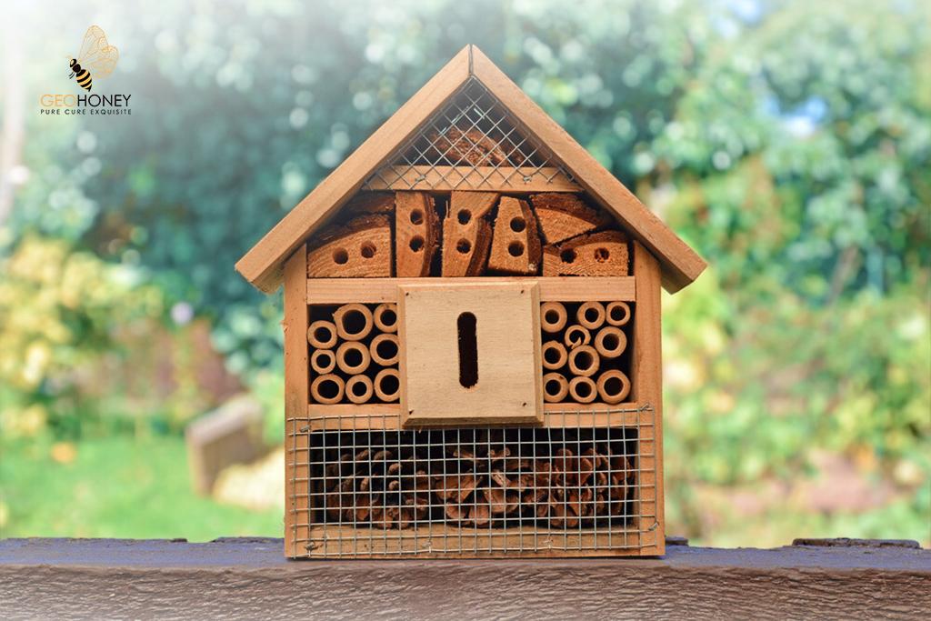 Man-Made Bee Hives